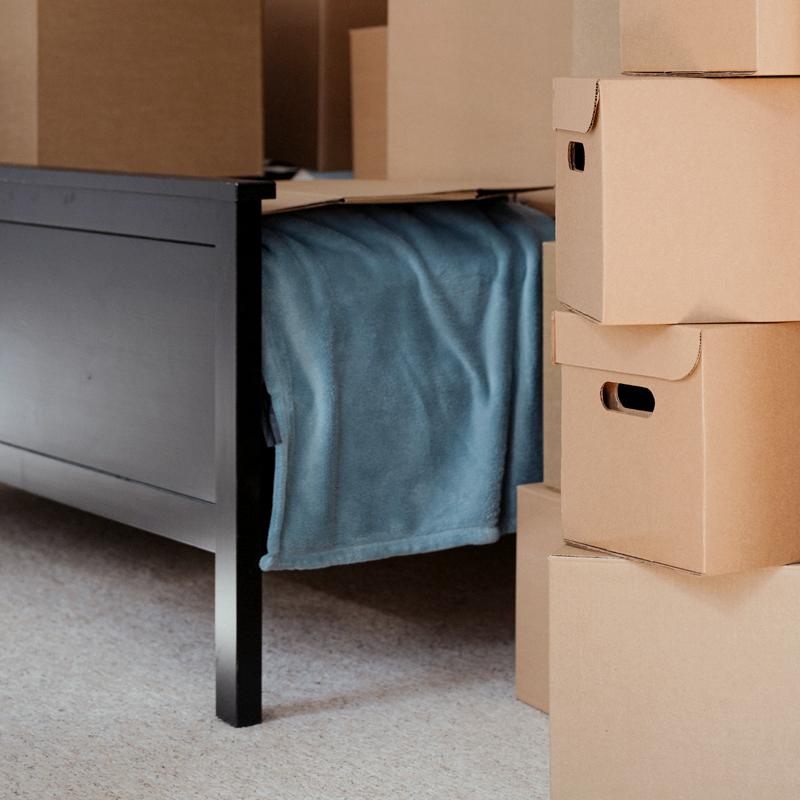 Boxes_bed